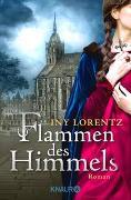 Cover-Bild zu Flammen des Himmels von Lorentz, Iny