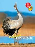 Cover-Bild zu Entdecke die Kraniche von Müller-Wensky, Helga