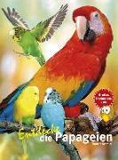 Cover-Bild zu Entdecke die Papageien von Schmidt, Thomas
