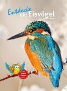 Cover-Bild zu Entdecke die Eisvögel von Schmidt, Thomas