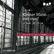 Cover-Bild zu Kleiner Mann - was nun? (Audio Download) von Fallada, Hans