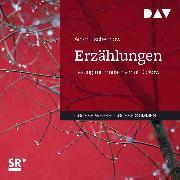 Cover-Bild zu Erzählungen (Audio Download) von Tschechow, Anton