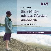 Cover-Bild zu Eine Nacht mit den Pferden. Erzählungen (Audio Download) von Barnes, Djuna