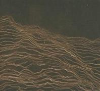 Cover-Bild zu REFLECTIONS: MOJAVE DESERT (CD + DVD Video)