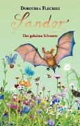 Cover-Bild zu Flechsig, Dorothea: Sandor Der geheime Schwarm