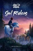 Cover-Bild zu Dahlgren, Helena: Soul Riders (eBook)