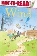 Cover-Bild zu Wind von Bauer, Marion Dane