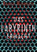 Cover-Bild zu Das Labyrinth erwacht (1) von Wekwerth, Rainer