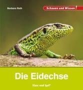 Cover-Bild zu Die Eidechse von Rath, Barbara