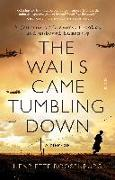 Cover-Bild zu Roosenburg, Henriette: The Walls Came Tumbling Down