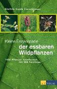 Cover-Bild zu Kleine Enzyklopädie der essbaren Wildpflanzen