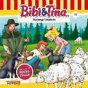 Cover-Bild zu Bibi & Tina - Folge 97: Die junge Schäferin (Audio Download) von Dittrich, Markus