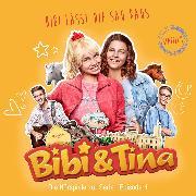 Cover-Bild zu Bibi & Tina - S1/04: Bibi lässt die Sau raus (Hörspiel zur Serie) (Audio Download) von Assenov, Viktoria