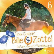 Cover-Bild zu Gefahr auf der Pferdekoppel - Bille und Zottel 6 (Ungekürzt) (Audio Download) von Caspari, Tina
