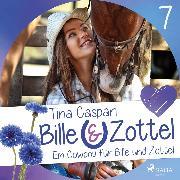 Cover-Bild zu Ein Cowboy für Bille und Zottel - Bille und Zottel 7 (Ungekürzt) (Audio Download) von Caspari, Tina
