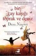 Cover-Bild zu Dina Nayeri, Daniel: Bir Cay Kasigi Toprak ve Deniz