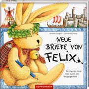 Cover-Bild zu Langen, Annette: Neue Briefe von Felix. Ein kleiner Hase reist durch die Vergangenheit