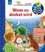 Cover-Bild zu Droop, Constanza: Wieso? Weshalb? Warum? junior: Wenn es dunkel wird (Band 28)