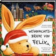 Cover-Bild zu Langen, Annette: Weihnachtsbriefe von Felix