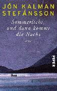 Cover-Bild zu Stefánsson, Jón Kalman: Sommerlicht, und dann kommt die Nacht