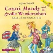 Cover-Bild zu Hoßfeld, Dagmar: Conni, Mandy und das große Wiedersehen