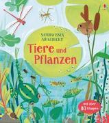 Cover-Bild zu Lacey, Minna: Naturwissen aufgedeckt! Tiere und Pflanzen