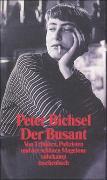 Cover-Bild zu Bichsel, Peter: Der Busant