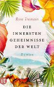 Cover-Bild zu Tremain, Rose: Die innersten Geheimnisse der Welt