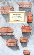 Cover-Bild zu Storm, Theodor: Ein Doppelgänger