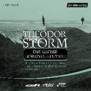 Cover-Bild zu Storm, Theodor: Die große Hörspiel-Edition