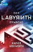 Cover-Bild zu Wekwerth, Rainer: Das Labyrinth erwacht (eBook)