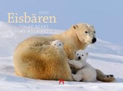Cover-Bild zu Eisbären 2020 von Ackermann Kunstverlag (Hrsg.)