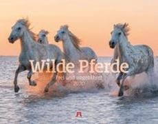 Cover-Bild zu Wilde Pferde 2020 von Ackermann Kunstverlag (Hrsg.)