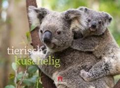 Cover-Bild zu Tierisch kuschelig 2020 von Ackermann Kunstverlag (Hrsg.)