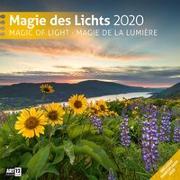 Cover-Bild zu Magie des Lichts 2020 von Ackermann Kunstverlag (Hrsg.)