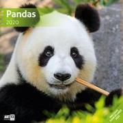 Cover-Bild zu Pandas 2020 von Ackermann Kunstverlag (Hrsg.)