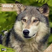 Cover-Bild zu Wölfe 2020 von Ackermann Kunstverlag (Hrsg.)