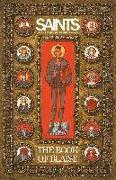 Cover-Bild zu Sean Lewis: Saints: The Book of Blaise