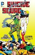Cover-Bild zu Ostrander, John: Suicide Squad Vol. 4: The Janus Directive