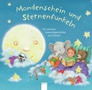 Cover-Bild zu Boehme, Julia: Mondenschein und Sternenfunkeln