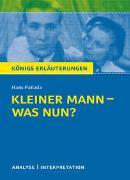 Cover-Bild zu Fallada, Hans: Königs Erläuterungen: Kleiner Mann - was nun? von Hans Fallada