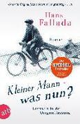 Cover-Bild zu Fallada, Hans: Kleiner Mann - was nun?