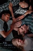 Cover-Bild zu Sanchez, Alex: Boyfriends with Girlfriends