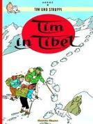 Cover-Bild zu Hergé: Tim und Struppi, Band 19