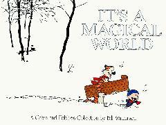 Cover-Bild zu Watterson, Bill: It's a Magical World
