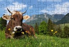 Cover-Bild zu Gmeiner-Verlag (Hrsg.): Puzzle-Postkarte Allgäu