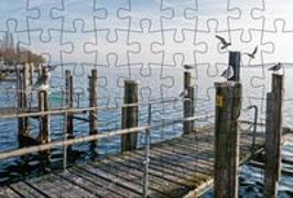 Cover-Bild zu Gmeiner-Verlag (Hrsg.): Puzzle-Postkarte Bodensee 1