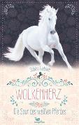 Cover-Bild zu Giebken, Sabine: Wolkenherz - Die Spur des weißen Pferdes