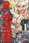Cover-Bild zu BOICHI: Dr. Stone 1