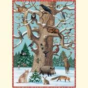 Cover-Bild zu Tiere im Winter von Müller, Thomas (Illustr.)